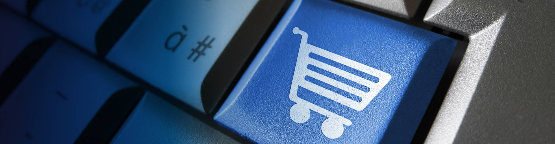 Ecommerce Online Shopping Concept